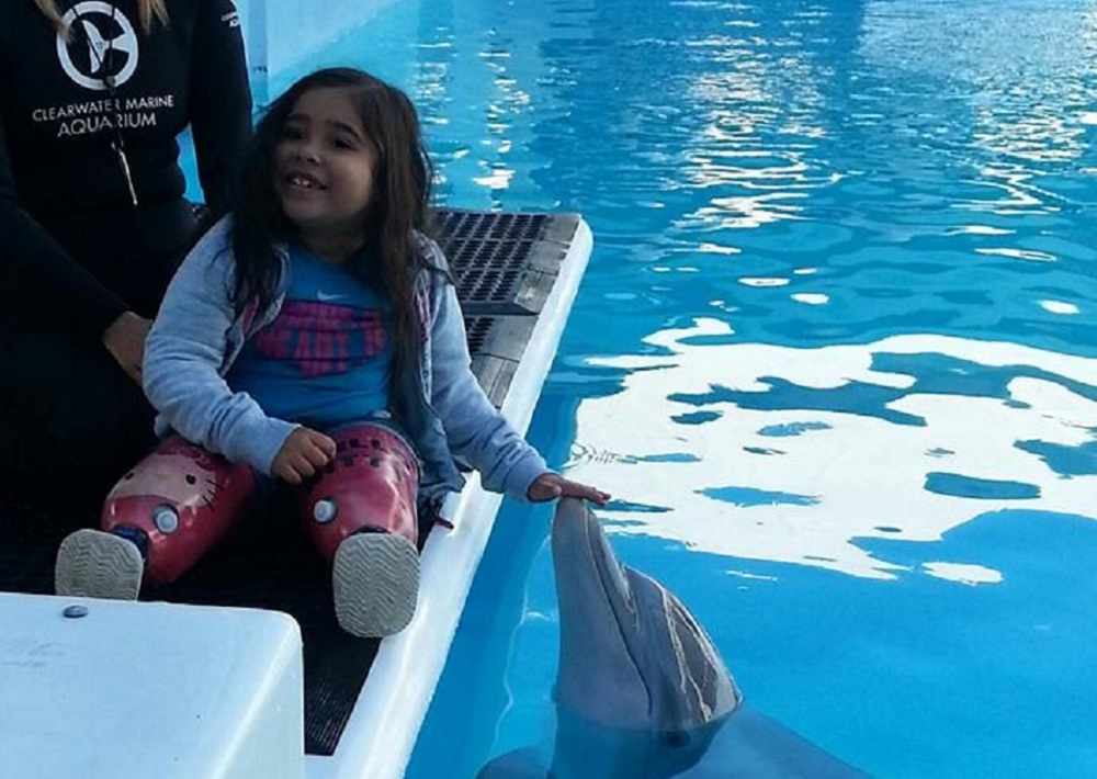 Laveen student inspired by Dolphin Tale movie appears in sequel