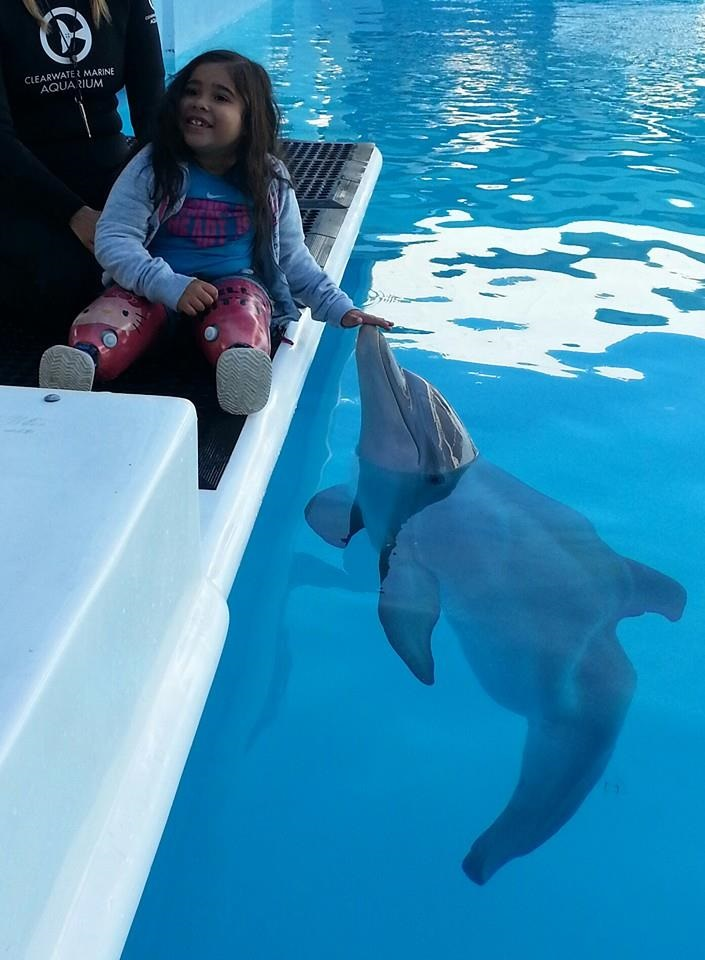 Laveen student inspired by Dolphin Tale movie appears in sequel FernandaInside