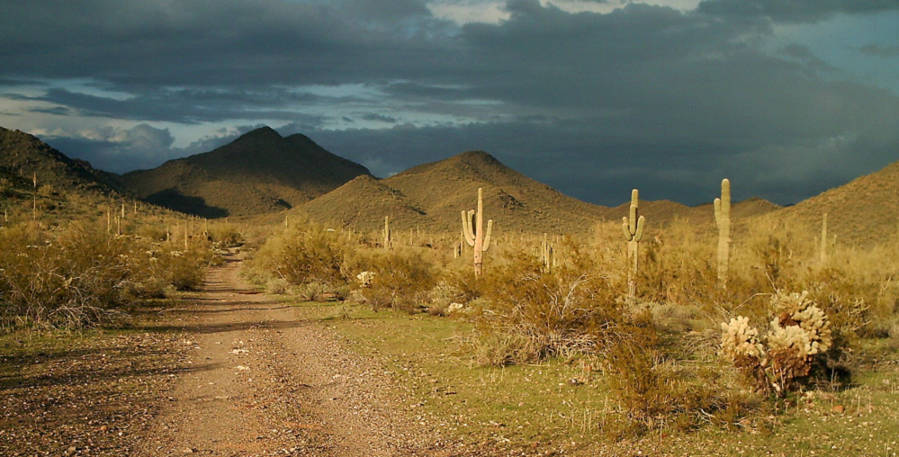 Arizona State Trust Land Within Cave Creek Town Limits.