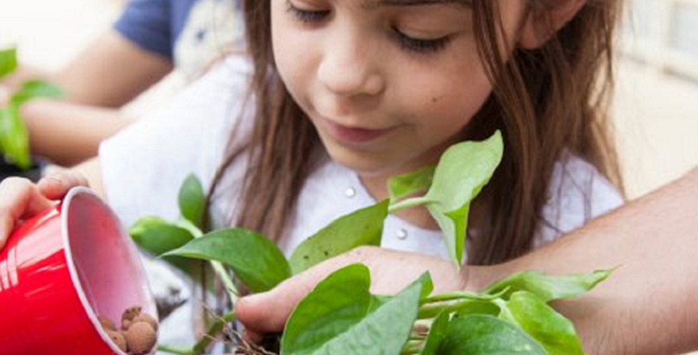 Seeds And Gardening Supplies Are Just One Of The Many Gifts That Combine Fun And Learning. Photo By Tim Hacker/Mesa Public Schools