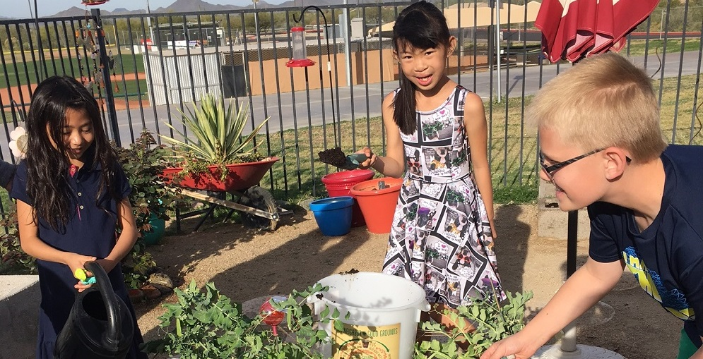 Horseshoe Trails Elementary School Students Add Coffee Grounds Donated From McDonald's To Their School Garden To Add Nutrients To The Soil. Photo Courtesy Cave Creek Unified School District