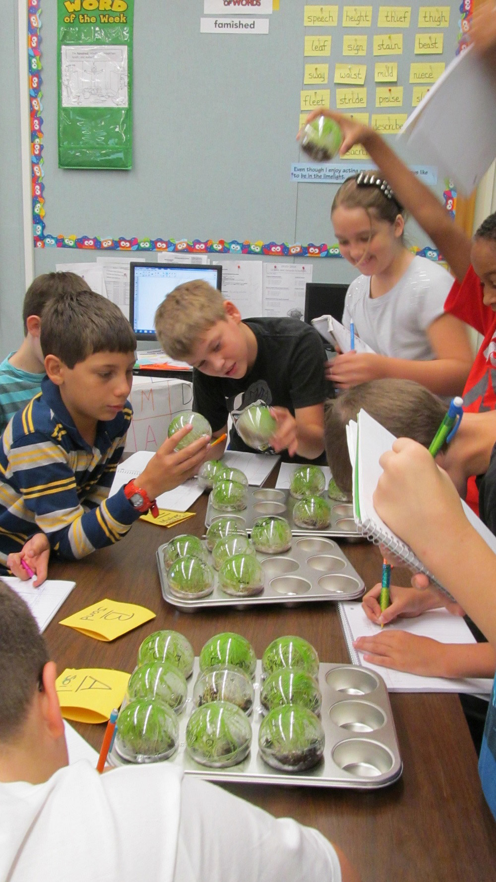 Arizona leads nation in fourth-grade growth in science on NAEP STEMMiniGrantPhotoDrConantCoyoteSprings