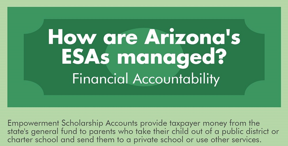 A Portion Of The AZEdNews ESA Financial Accountability Infographic By Lisa Irish/AZEdNews
