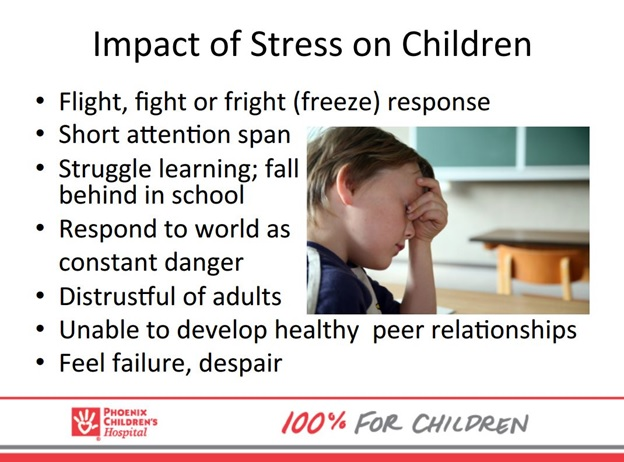 Impact Of Stress On Children Slide From Presentation By Marcia Stanton, Adverse Childhood Experience Initiative Coordinator At Phoenix Children's Hospital