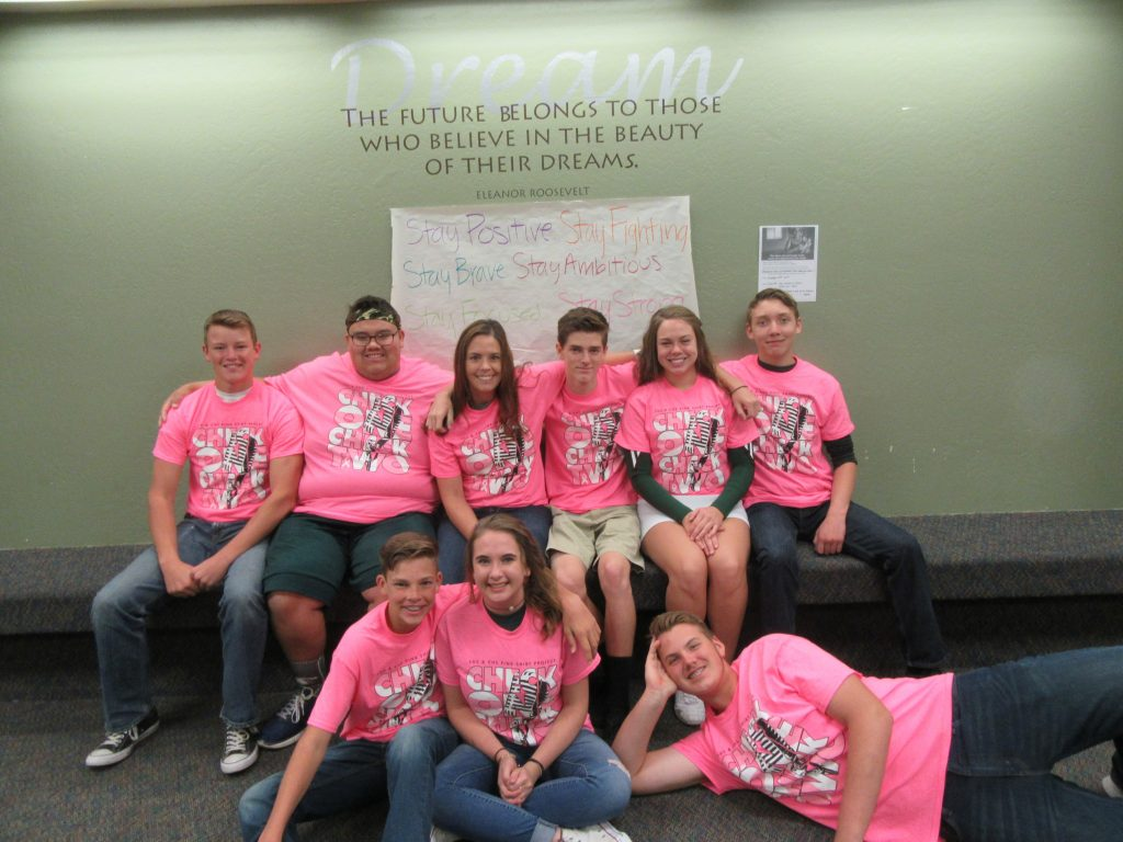 Submitted Stories 2017-Pink-Shirt-Project-CHS-and-FHS-1024x768