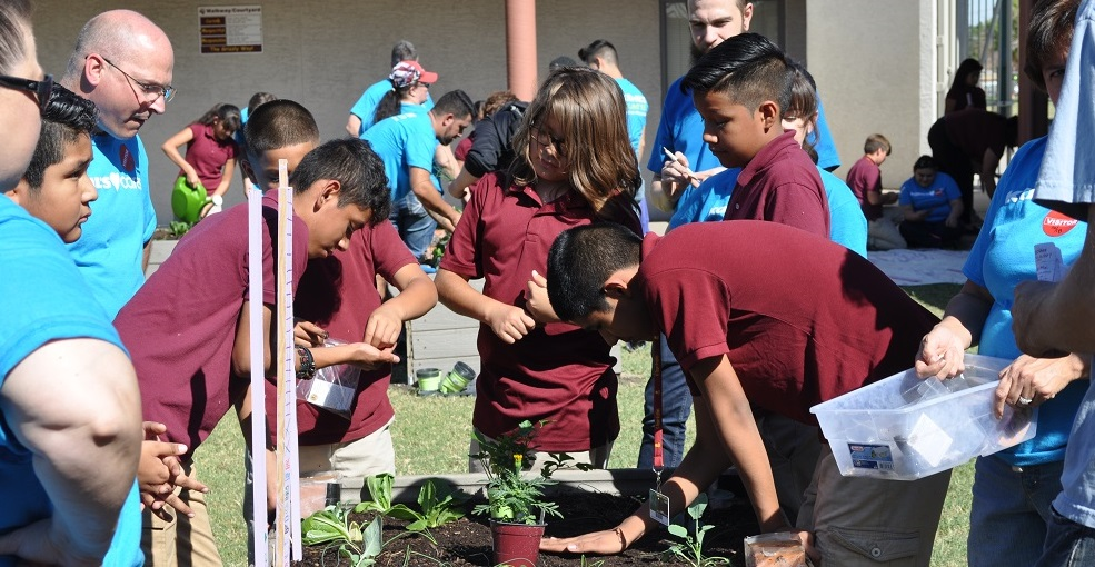 Garfield Elementary School Sixth-graders Planting Vegetables In The Courtyard Garden. Photo By Lisa Irish/AZEdNews