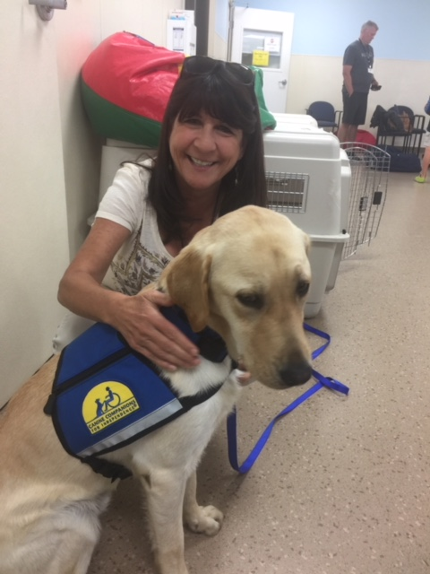 Canine Companions for Independence facility dog joins Kyrene de la Esperanza 1st-Day-with-Vest-002