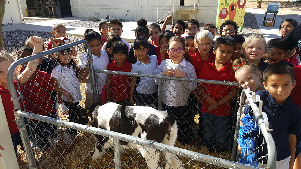 "First Graders Learn About The Anatomy Of A Cow During The ""From Alfalfa To Ice Cream"" Field Trip. Photo Courtesy Natural Resource Education Center"