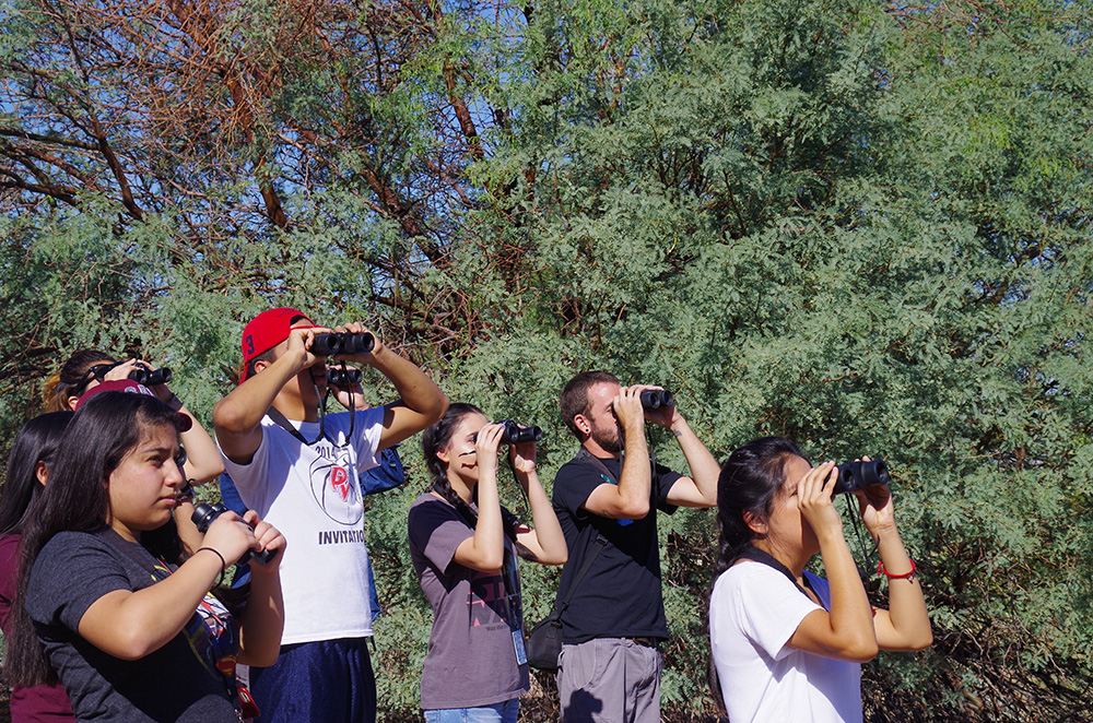 Audubon Arizona Program Will Bring West Valley Students On A Field Trip To The Rio Salado To See Classroom Curriculum Applied In The Natural World, Thanks To Grant From APS. Photo Courtesy Of Audubon Arizona