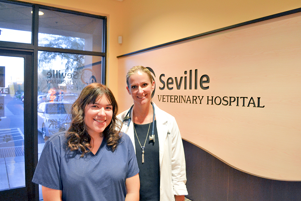 Trained, credentialed, placed: How to know if a CTE program works Seville-Veterinary-Hospital-EVIT-Veterinary-Assistant-alum-Chloe-Chizeda-with-Veterinarian-1