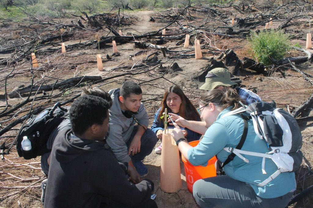 Audubon Arizona's River Pathways introduces students to conservation careers thanks to APS grant Audubon-Working-1024x683